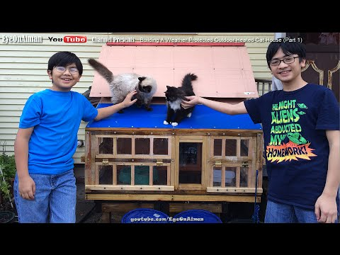 An Amazing Outdoor Cat House - Weather Protected & Heated - By Aiman And His Crew (Part 1)