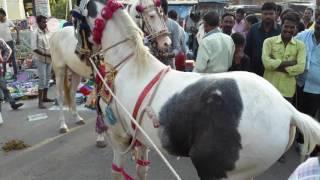 Baba Taj(1)