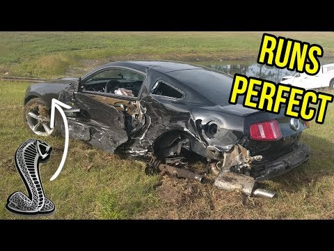 The Cheapest Running Coyote Mustang Came with a Shelby GT500 Surprise *BIOHAZARD*