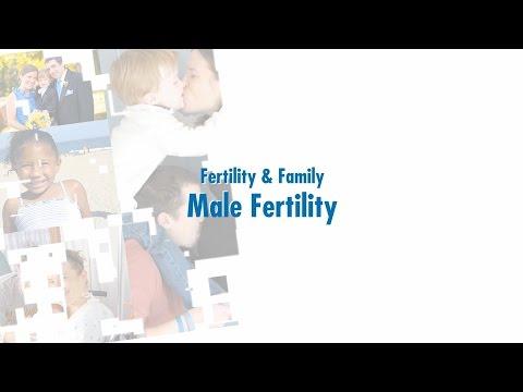 Fertility & Family: Male Fertility