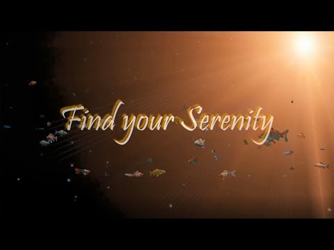 Find your Serenity