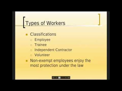 Wage Protections & Entitlements: Protect Yourself + Your Business From Wage Theft with Jack Newhouse