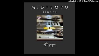 Midtempo DSM Mix 016 Tiggas