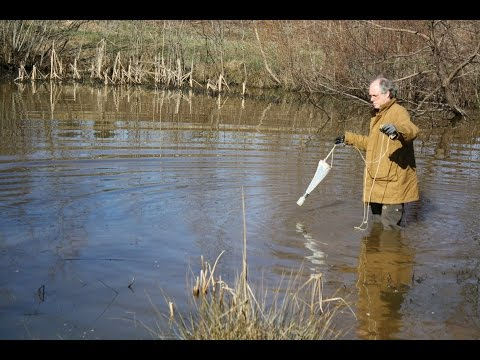 Environmental Biologist - Cool Jobs