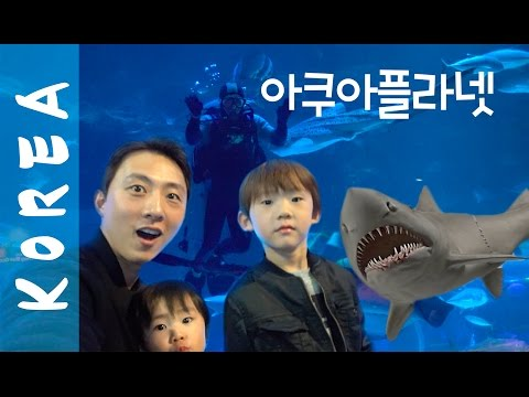 KOREA DIARY | GOING TO AQUA PLANET! + CUTE Gangnam Cafe! ♥ 아쿠아 플라넷 고고~!!