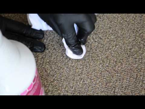How to Remove Motor Oil from Carpet