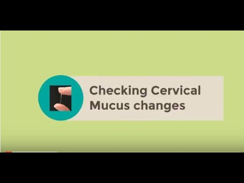 Checking Cervical Mucus Changes