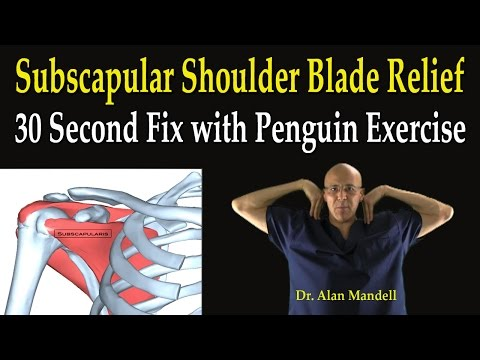 Subscapular Shoulder Blade Relief (30 Second Fix with Penguin Exercise) - Dr Mandell