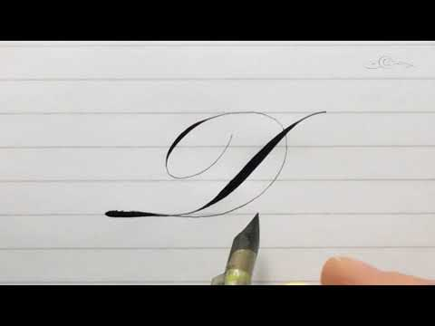 The Letter D in an 'Italian' Style Accented Engrosser's / Roundhand Pointed Pen Calligraphy Script