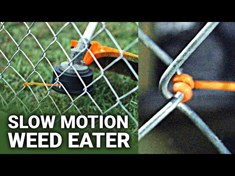 How Weed Eaters Work (at 62,000 FRAMES PER SECOND) - Smarter Every Day 236