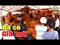 Chen nhau xem bộ KỲ MỘC gỗ Nu Đinh có giá khủng ở Sơn Tây, Hà Nội