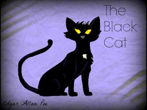 The Black Cat by Edgar Allan Poe - Audio Book