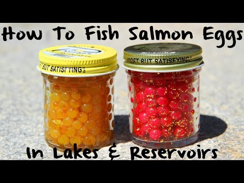 How to Fish Salmon Eggs in Lakes & Reservoirs
