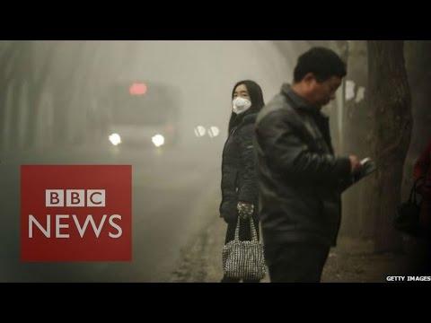 China smog: 'Sky dark from air pollution'  - BBC News