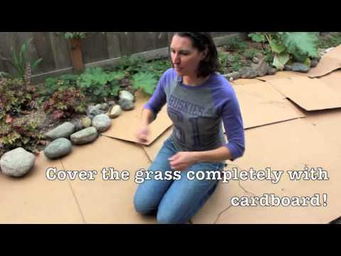 Using Sheet Mulch to Kill Grass
