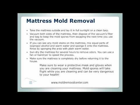Mattress Mold Removal