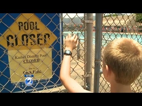 Experts offer solutions to rid Kailua pool of wild ducks
