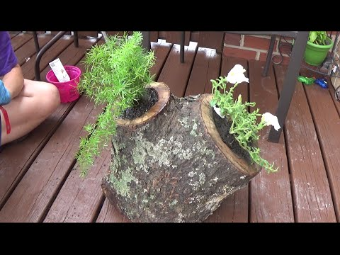 Flower planter from a log