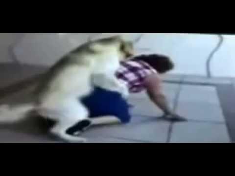 Xxx Mp4 Sex Fail Dog Lady 3gp Sex