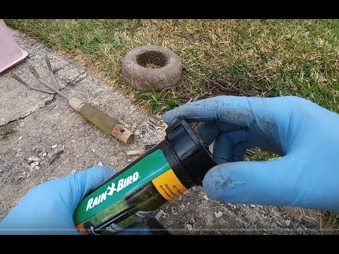 How To Replace A Sprinkler Head After Hit By Car (Rain Bird 180 Degrees Spray)