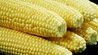 How To Boil Corn On The Cob Cooking With Kimberly