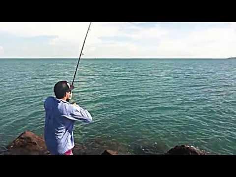 12kg Milkfish Extreme Sportsfish