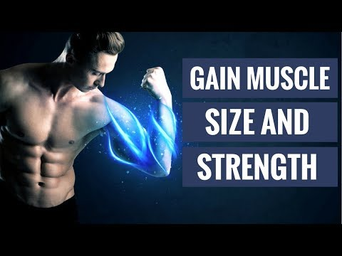 The 4 Best Supplements to Gain Muscle and Strength