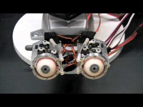 Animatronic Eye Kit