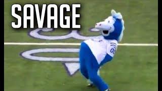 NFL Funniest Mascot Moments    HD