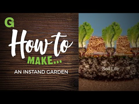 How to Build an Instant Garden
