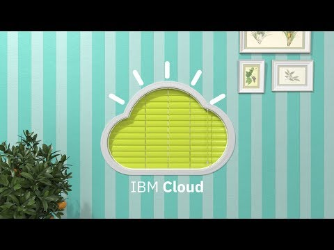 The IBM Cloud: Insights