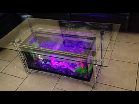 I build coffee table fish tanks