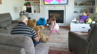 Grandpa Toddy Game