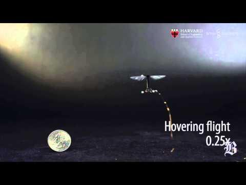 Harvard researchers build robotic fly