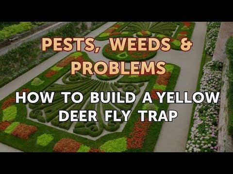 How to Build a Yellow Deer Fly Trap