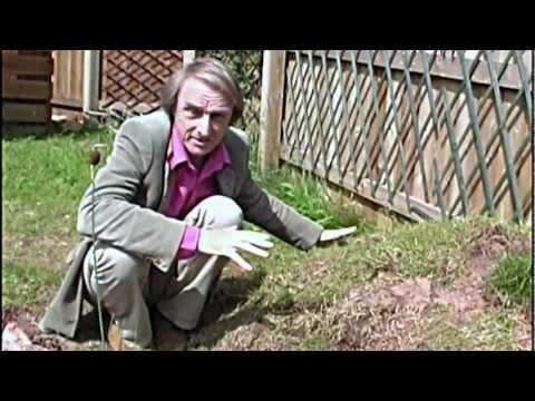 Wildlife Gardening - How to make your garden a wildlife haven.