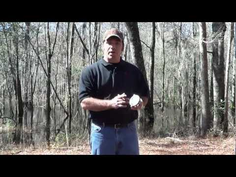 Using Reynolds Custom Calls