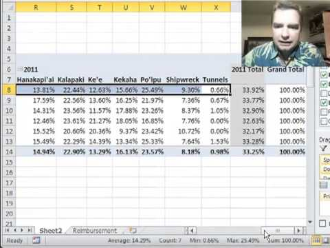 Excel Video 301 Percentages of the Parent Column Total