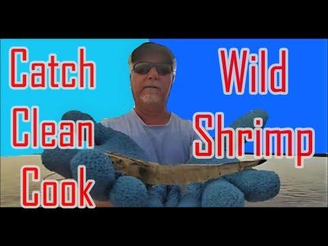 Catch Clean and Cook Wild Florida Shrimp