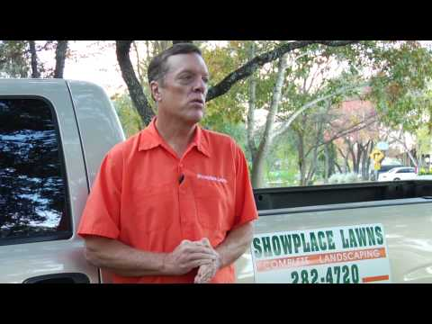 Lawn Care Tips : How to Cut St. Augustine Grass