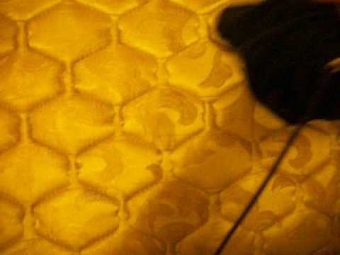 How to Clean Odor from a Mattress.