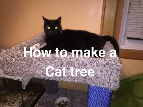 Build your own cat tree.