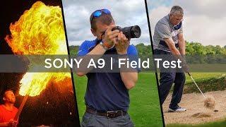 Sony A9 - Field Test