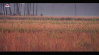 Download Chandi Veeran Tamil Movie Alunguraen Kulunguraen Song Atharvaa Video