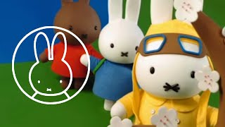 Miffy visits the Far East • Explore the world with Miffy