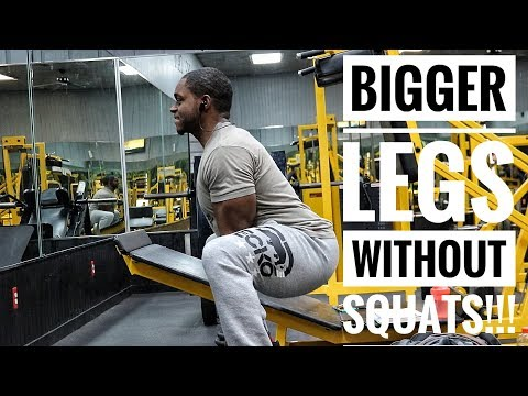 The Perfect Leg Workout For Building Muscle | For Men & Women