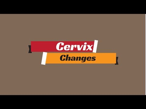 Cervix Changes During Ovulation | Cervix Position | 3 Steps to Checking Your Cervix