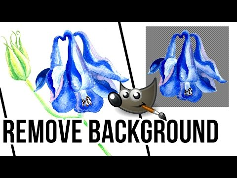 How to Remove Background in GIMP 2