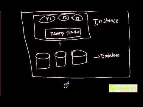 SCPT 1: What is Oracle Database Server