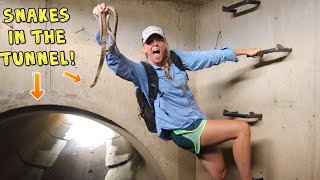 Download CATCHING SNAKES in UNDERGROUND TUNNELS!!!! Video